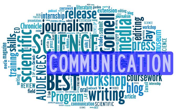 commuincation performance dissertation