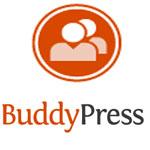 Обзор плагина BuddyPress